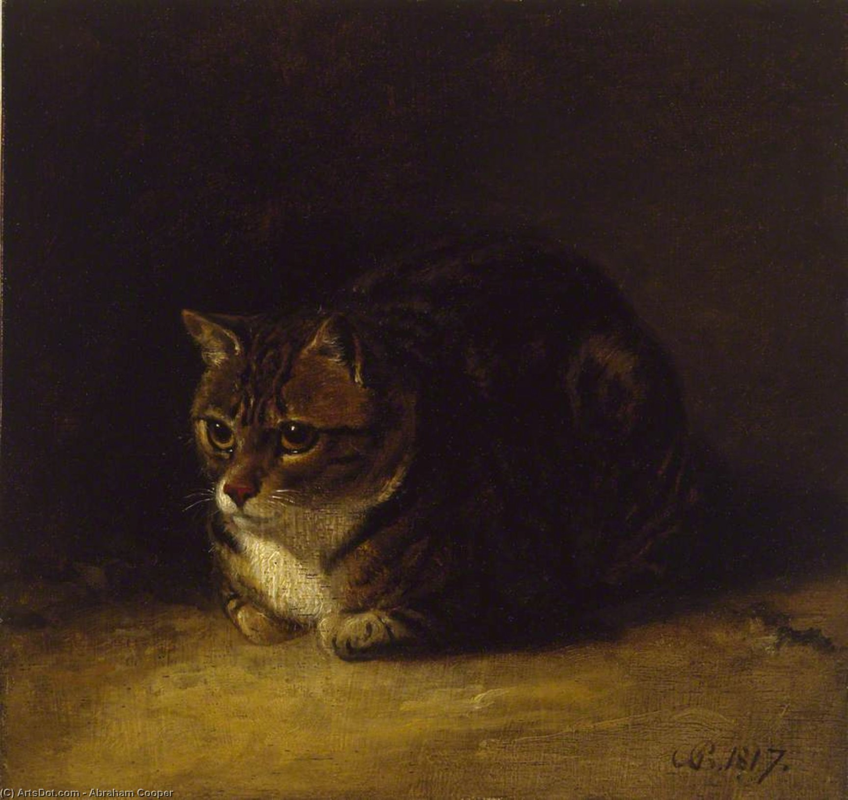étude des a cat de Abraham Cooper (1787-1868, United Kingdom)