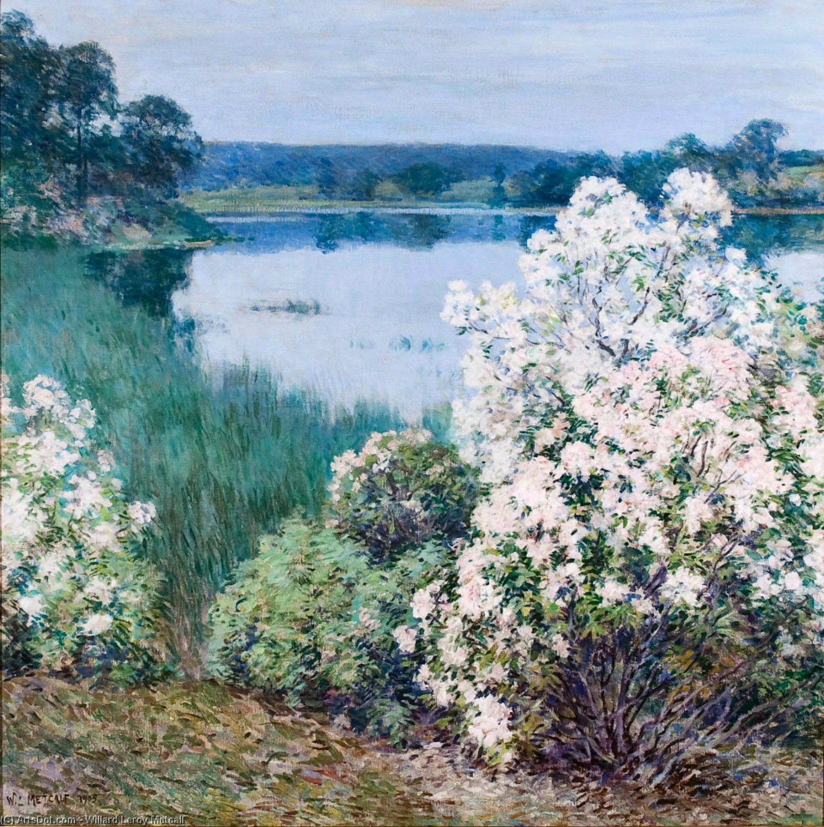 Kalmia, 1912 de Willard Leroy Metcalf (1858-1925, United States) | Reproductions D'art Sur Toile | ArtsDot.com