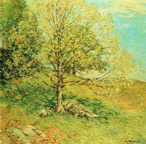 Willard Leroy Metcalf - Bourgeonnement Oak