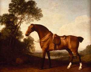 George Stubbs - Une baie Hunter Saddled