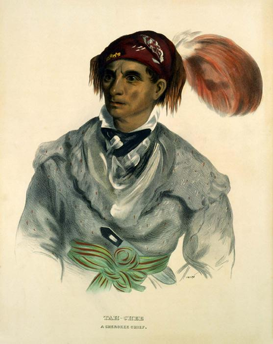 Tah-Chee, chef Cherokee, huile de Charles Bird King (1785-1862, United States)