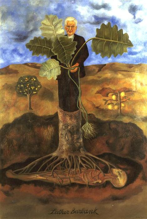 luther burbank, Huile de Frida Kahlo (1907-1954, Mexico)