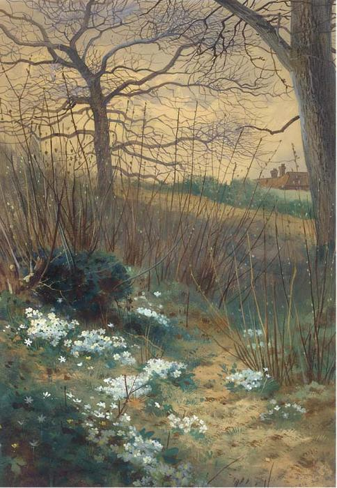 une début printemps matin, aquarelle de Archibald Thorburn (1860-1935, United Kingdom)