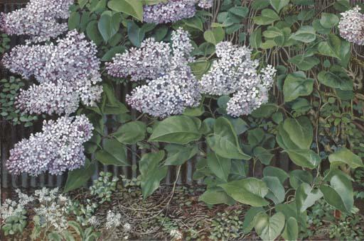 Lilas de Stanley Spencer (1891-1959, United Kingdom) | Reproduction Peinture | ArtsDot.com