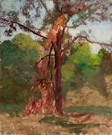 a arbre de Theodore Clement Steele (1847-1926, United States)
