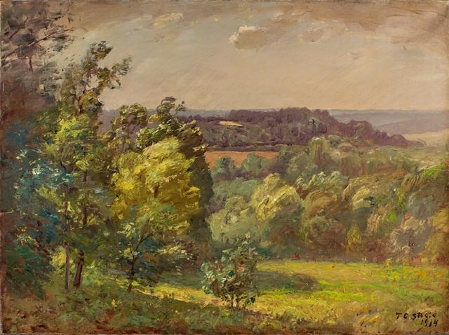 À travers la vallée (Salt Creek, un jour venteux) de Theodore Clement Steele (1847-1926, United States) | ArtsDot.com
