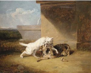 Abraham Cooper - Une Dog-fight