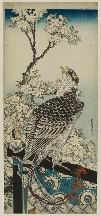 Hawk et Cherry Blossoms de Katsushika Hokusai (1760-1849, Japan) | Reproduction Peinture | ArtsDot.com