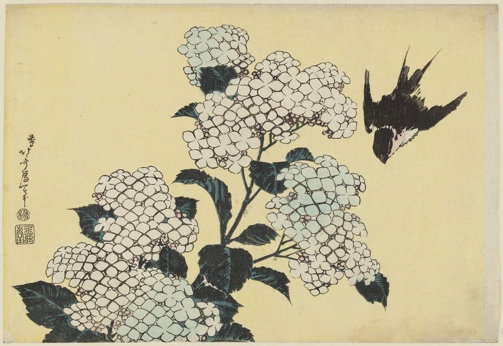 Hortensias Et Swallow de Katsushika Hokusai (1760-1849, Japan) | Copie Tableau | ArtsDot.com