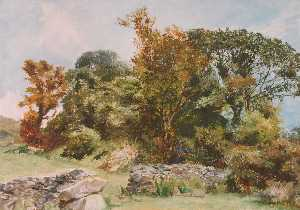 Frederick William Hayes - Beddgelert