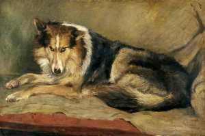 William Henry Charlton - Colley chien