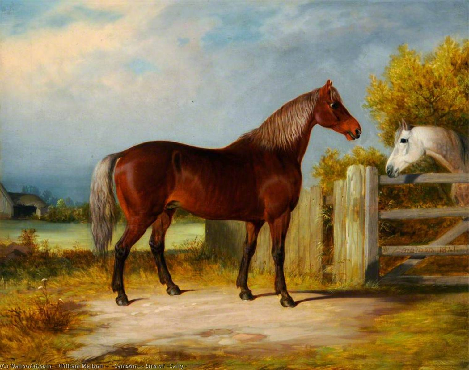 Achat Reproductions D'œuvres D'art | `Samson` , Sire de `Sally`, 1841 de William Malbon | ArtsDot.com