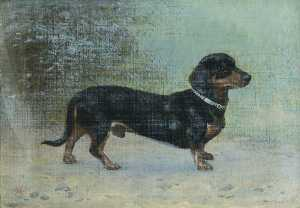 Thomas Hall - 'Tommy' , une Dachsund